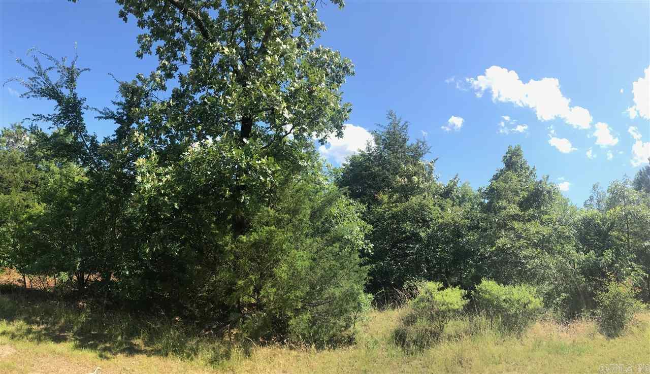 Farm/Ranch/Land for sale – TBD  Chippewa   Mena, AR