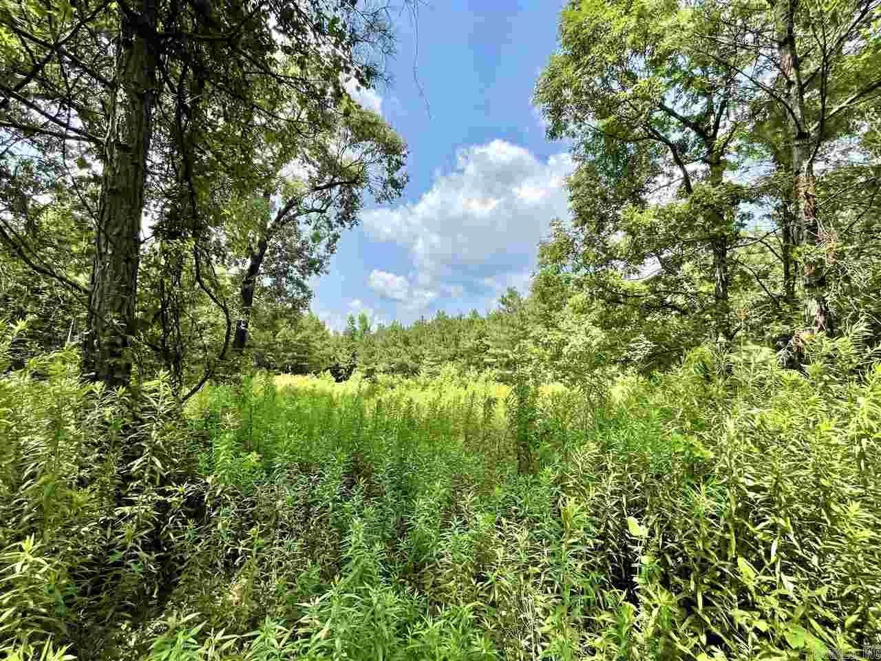 Farm/Ranch/Land for sale – TBD  SUSIE LN   Mena, AR