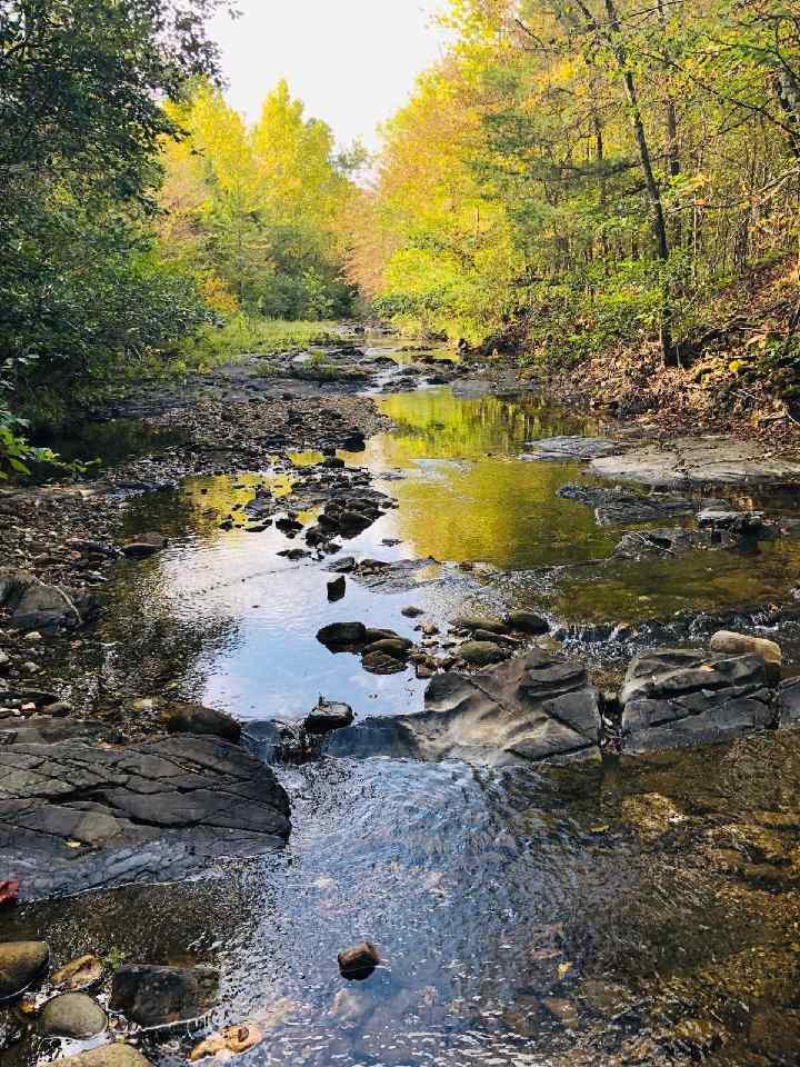 Vacant Land for sale –   Yeaman Lane   Mount Ida, AR