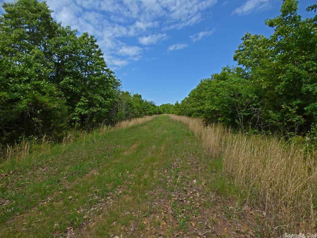 Vacant Land for sale –   Herron   Ash Flat, AR